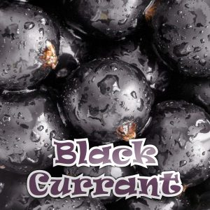 Blackcurrant 50ML Short Fill