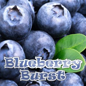 Blueberry 50ML Short Fill